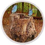 Bird Gossip Round Beach Towel