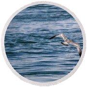 Bird In Flight Over Water Round Beach Towel