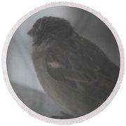 Bird In The Snow Round Beach Towel