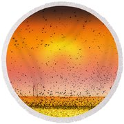 Bird Land Fine Art Color Photography Print Round Beach Towel