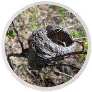 Bird Nest In Wild Rose Bush Round Beach Towel
