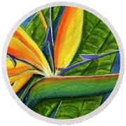 Bird Of Paradise #300b Round Beach Towel
