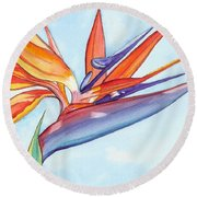 Bird Of Paradise IIi Round Beach Towel