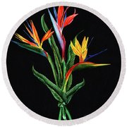 Bird Of Paradise In Black Round Beach Towel