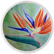 Bird Of Paradise, Noon Round Beach Towel