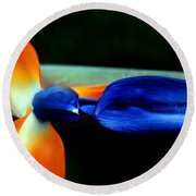 Bird Of Paradise Study 1 Round Beach Towel