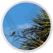 Bird On A Palm Branch Round Beach Towel