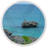 Bird On A Rock Round Beach Towel