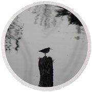 Bird On A Stump Round Beach Towel
