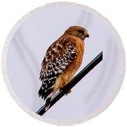Bird On A Wire With Attitude Round Beach Towel