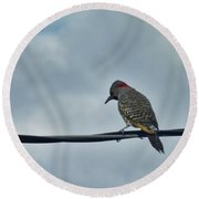 Bird On An Electrical Wire... Round Beach Towel