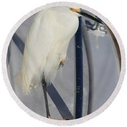 Bird On Boat Round Beach Towel