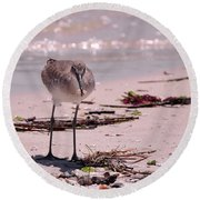 Bird On The Beach Round Beach Towel