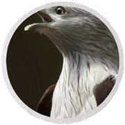 Bird Portrait Round Beach Towel