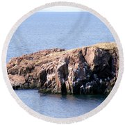 Bird Rock Round Beach Towel