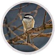 Bird Song Round Beach Towel