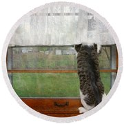 Bird Watching Kitty Cat Round Beach Towel