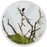 Bird011 Round Beach Towel