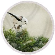Birdie Stilllife Round Beach Towel