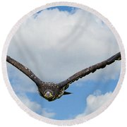 Birds 65 Round Beach Towel