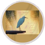 Birds And Fun At Butler Park Austin - Birds 3 Detail Macro Poster - Good Morning Round Beach Towel