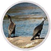 Birds And Lake Round Beach Towel