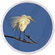 Birds - Great Egret Round Beach Towel