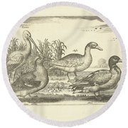 Birds In The Reeds, Adriaen Collaert, 1659 Round Beach Towel