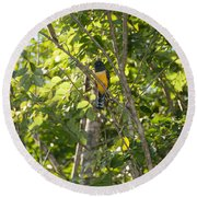 Birds Inside The Coba Ruins Round Beach Towel