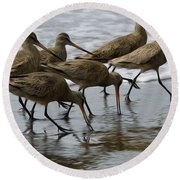 Birds Of A Feather 1 Round Beach Towel