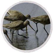 Birds Of A Feather 3 Round Beach Towel