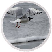 Birds Of A Feather 5 Round Beach Towel