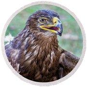 Birds Of Prey Series 3 Round Beach Towel