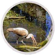 Birds Of The Everglades Round Beach Towel