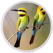 Birds On A Branch Round Beach Towel