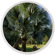 Bismarck Palm Round Beach Towel