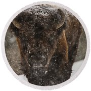Bison Buffalo Wyoming Yellowstone Round Beach Towel
