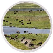 Bison Herd And Yellowstone River Round Beach Towel