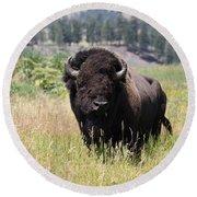 Bison In Grass Round Beach Towel