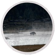 Bison In The River Round Beach Towel