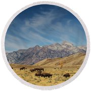 Bison The National Mammal Round Beach Towel