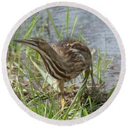 Bittern Round Beach Towel