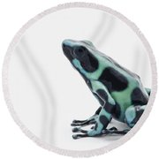 Black And Green Poison Dart Frog Round Beach Towel
