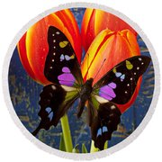 Black And Pink Butterfly Round Beach Towel
