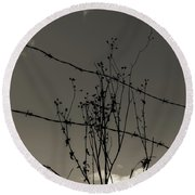 Black And White Barbwire And Branch Round Beach Towel