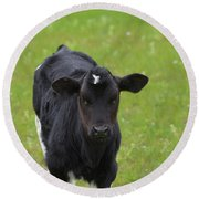 Black And White Calf Standing In A Field Round Beach Towel