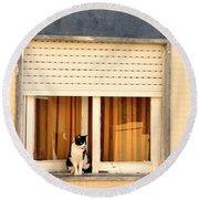 Black And White Cat On The Windowsill Round Beach Towel