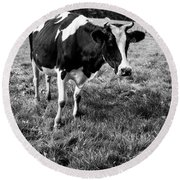 Black And White Cow Round Beach Towel