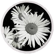Black And White Daisy 3 Round Beach Towel