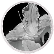Black And White Daylily Round Beach Towel